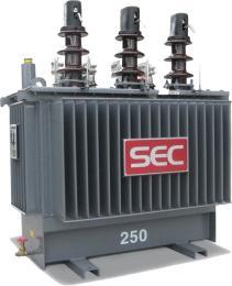 หม้อแปลงไฟฟ้า 250kVA 3 Phase 22 KV