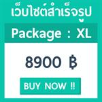 เว็บไซต์สำเร็จรูป แพ็คเกจ XL