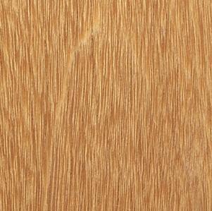 ไม้เต็ง  ( Selangan Batu )