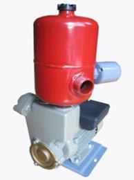 ปั๊มน้ำ-TP-40A