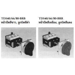เมนสวิตซ์  TDS40/66/80-BRB/TDS40/66/80-BRR