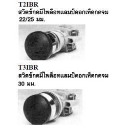 สวิทซ์กดพร้อมแลมป์ T2IBR/T3IBR