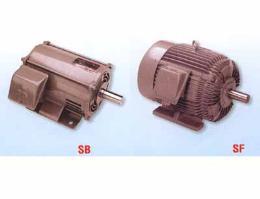 มอเตอร์ไฟฟ้า ใช้กับไฟระบบ Three