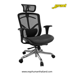 Ergohuman Thailand เก้าอี้เพื่อสุขภาพ BRANT-H