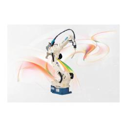 หุ่นยนต์อุตสาหกรรม ALMEGA AⅡ- V6