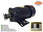 มอเตอร์ตู้จ่ายน้ำมัน 1 Hp มอเตอร์กันระเบิด มอเตอร์ไฟฟ้า มอเตอร์ปั๊ม มอเตอร์สำหรับอุปกรณ์งานน้ำมัน