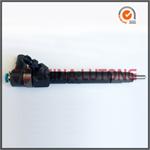 Mercedes Diesel Fuel Injector 6110701687