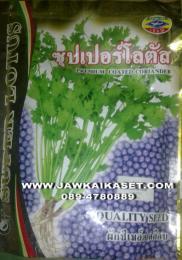 เมล็ดพันธุ์ผักชี ซุปเปอร์โลตัส ตราเครื่องบิน