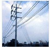 ลวดเหล็ก LT. Overhead ground wire strand