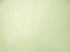 วอลล์เปเปอร์รุ่น Murogro FashionN12663