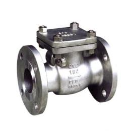 Check Valve Stainless Steel 316