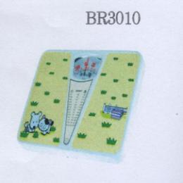 เครื่องชั่งน้ำหนัก รุ่น BR3010
