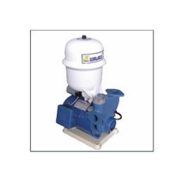 ปั๊มน้ำ รุ่น TP825