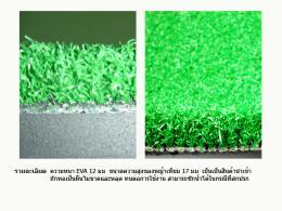 พรมหญ้าเทียมขนาด 1.50 1.50 ม. EVA