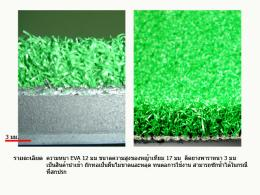 พรมหญ้าเทียมขนาด 1.50 1.50 ม. EVA ติดยางหนา 3 มม.