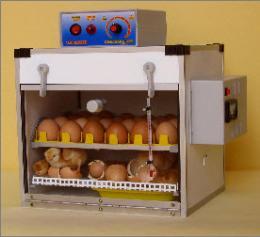 ตู้ฟักไข่ ( 24 ฟอง ) และตู้เกิด