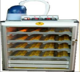 ตู้ฟักไข่ ( 1288 ฟอง ) และตู้เกิดในตู้เดียวกัน ( 1