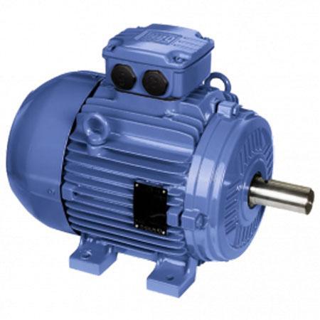 มอเตอร์แรงดันต่ำ-W21-Improved Efficiency-50°C