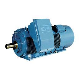 มอเตอร์แรงดันไฟฟ้าขนาดกลางและสูง H Line