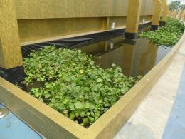 บ่อน้ำและสระน้ำตกแต่งสำหรับงาน Exhibition design