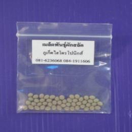 เมล็ดพันธุ์ผักสลัด (เคลือบ) จำนวน 50 เมล็ด