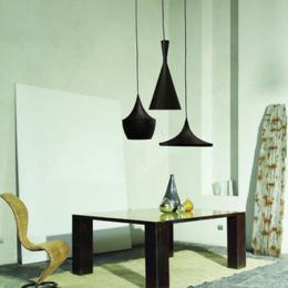 โคมไฟแขวนเพดาน สีดำ รุ่นพอตเตรี้ 3