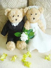 ตุ๊กตาหมีใส่ชุดแต่งงาน