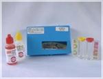 ชุดทดสอบน้ำ pH/Chlorine Test Kit