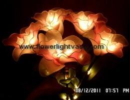 โคมไฟดอกคัทลียา สีแดงเหลือง+ขาว แบบ 5 ก้าน