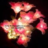 โคมไฟดอกคัทลียา ชมพูขาว