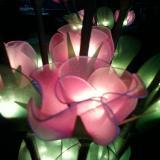 โคมไฟดอกกุหลาบสีชมพู