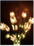 โคมไฟ ดอกโคม (บัวเล็ก) สีขาว