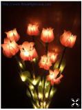 โคมไฟ ดอกโคม สีชมพู