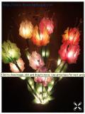 โคมไฟดอกดาวดึงส์ สีรวม