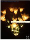 โคมไฟดอกช้องนาง สีเหลือง