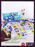 ผ้าปูที่นอนโตโต้ ผ้าห่มนวม ผ้าห่ม รหัสTT341
