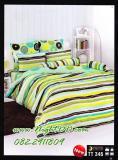 ผ้าปูที่นอนโตโต้ ผ้าห่มนวม ผ้าห่ม รหัสTT346
