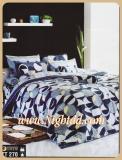 ผ้าปูที่นอน ชุดเครื่องนอนโตโต้ธรรมดา รหัสTT270