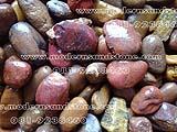 หินแม่น้ำ SKR 004