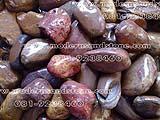 หินแม่น้ำ SKR 005