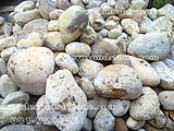 หินแม่น้ำ SKW 006