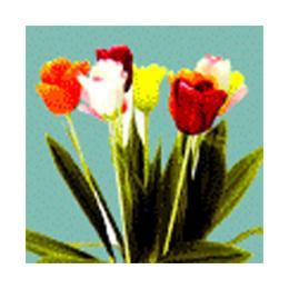 ดอกไม้ GNANO รหัส GNF