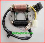 มัดไฟ LIFAN 110 cc.