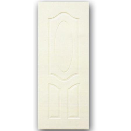 ประตู HI DOOR-A101