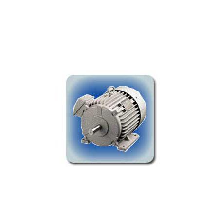 มอเตอร์ FUJI Standard 3-phase