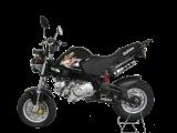 รถจักรยานยนต์ Stallions Mini Solo R (2012)