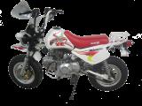 รถจักรยานยนต์ Stallions MOMO JR11 World Record
