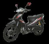 รถจักรยานยนต์ LIFAN PK110