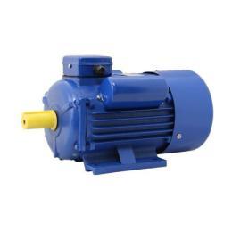 มอเตอร์ไฟฟ้า  รุ่น YCL100L-4