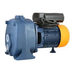 ปั๊มน้ำไฟฟ้า  รุ่น BP (2 ใบพัด)